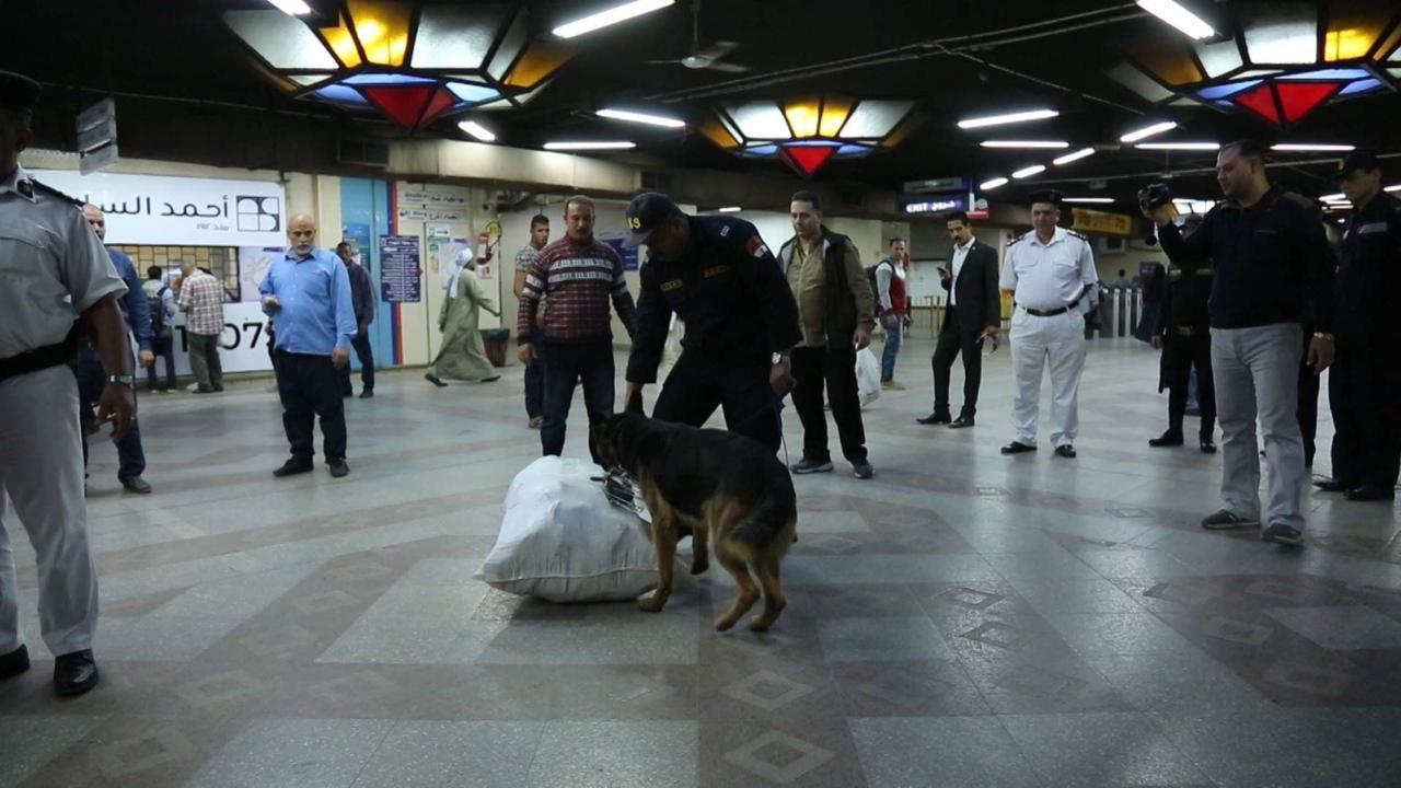 الكلاب البوليسة تمشط سكة حديد مصر