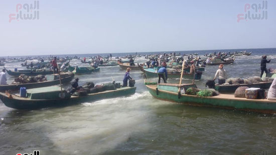 نائب وزير الزراعة ومحافظ شمال سيناء يطلقان موسم الصيد ببحيرة البردويل (1)