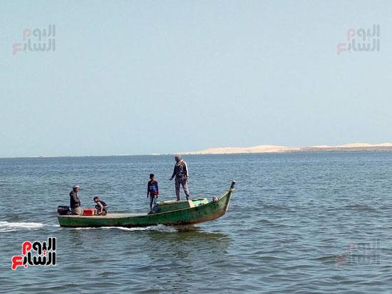 نائب وزير الزراعة ومحافظ شمال سيناء يطلقان موسم الصيد ببحيرة البردويل (6)