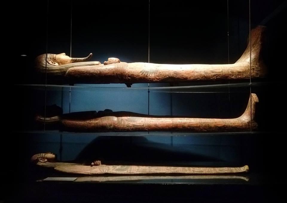 متحف السويس القومى (4)