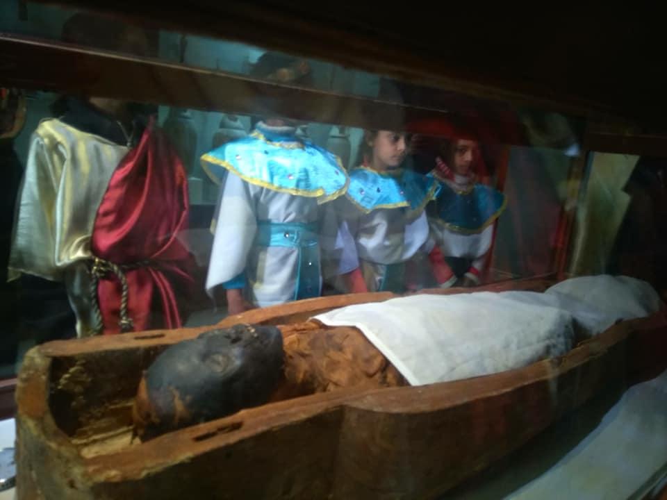 متحف آثار الإسماعيلية (1)