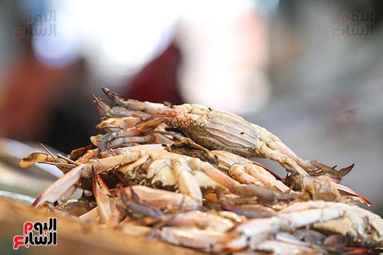 سوق السمك  (11)