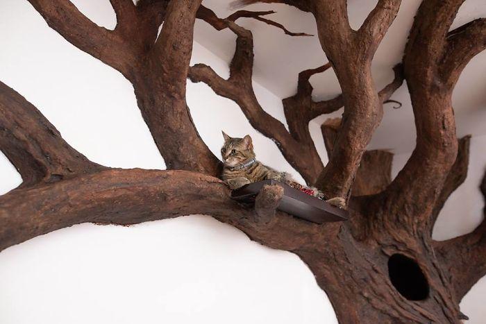 ديكور الشجرة فى المنزل (4)