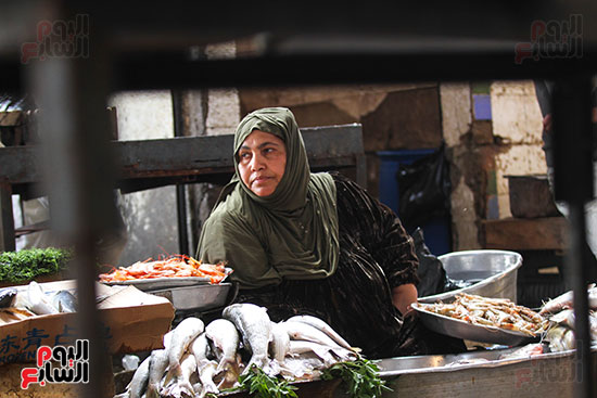 سوق السمك  (12)