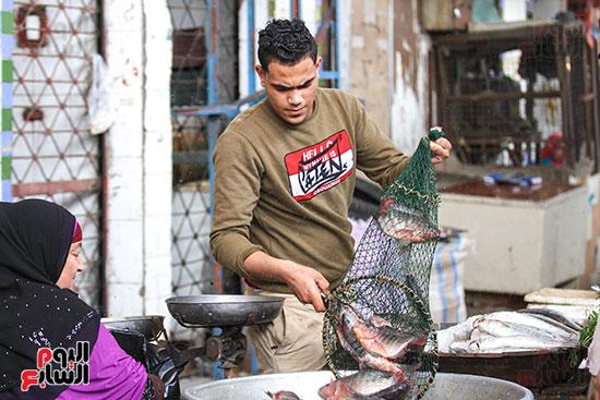سوق السمك  (28)