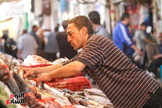 سوق السمك  (30)