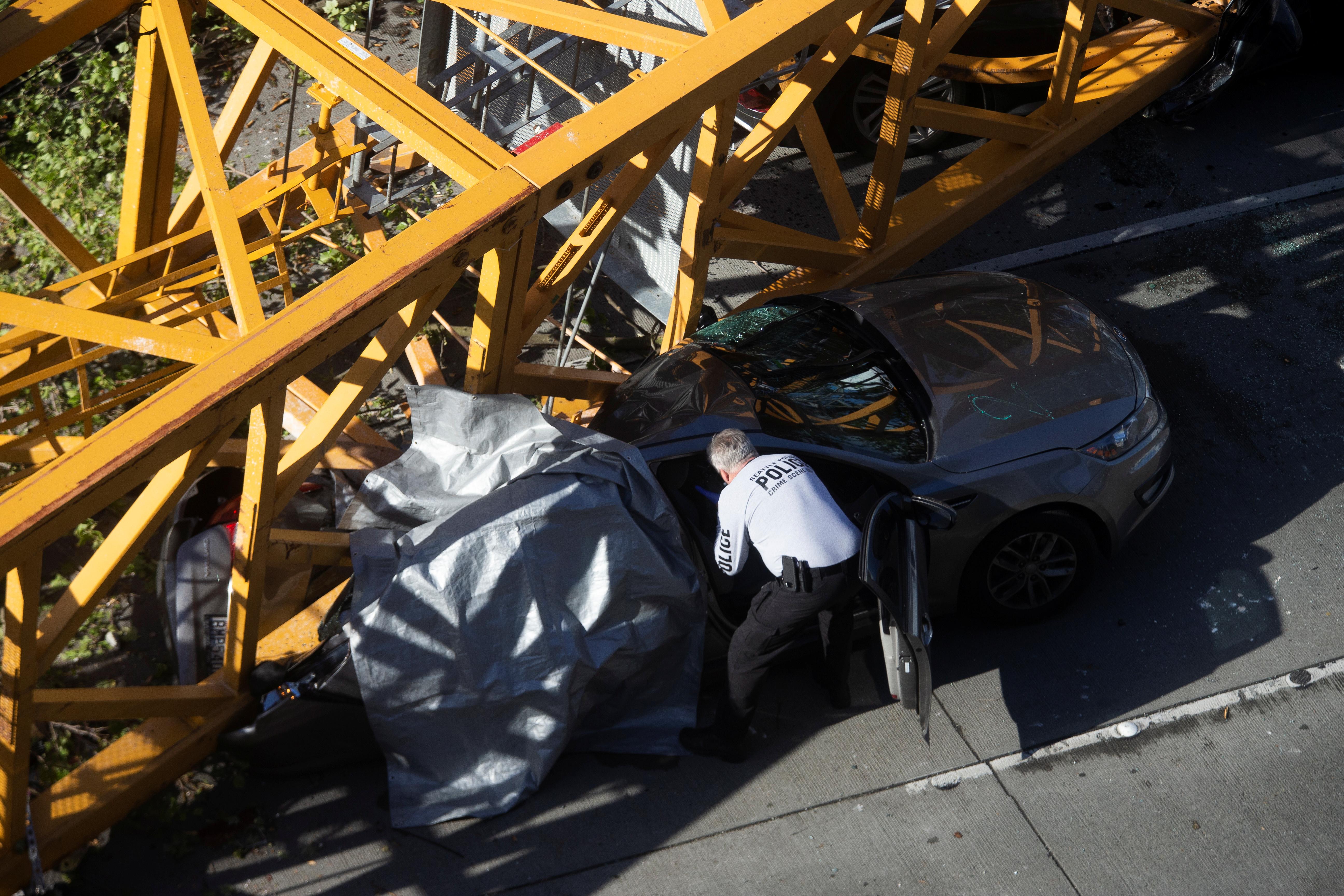 محقق يتفقد إحدى السيارات المحطمة