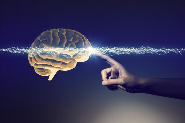 الجهاز العصبى 1