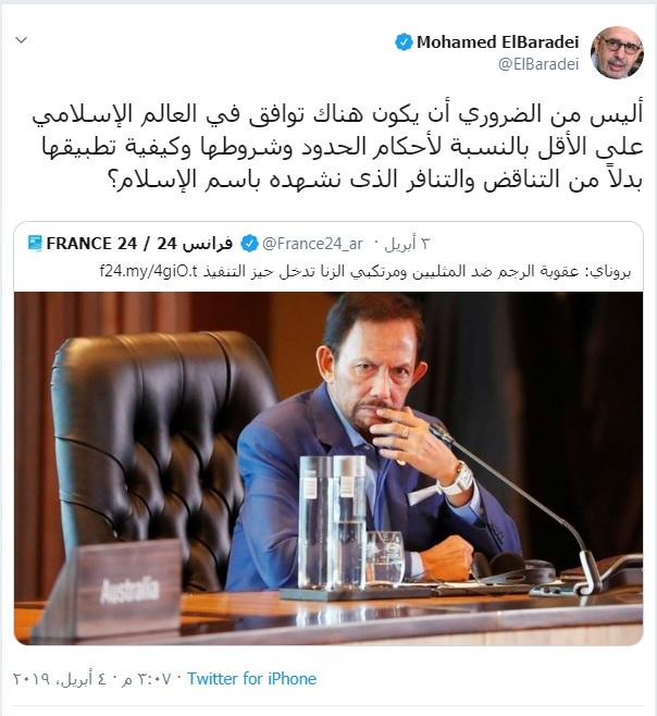 محمد البراداعى