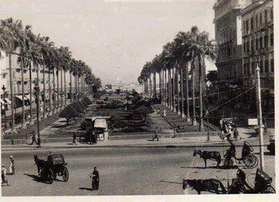 اسكندرية 11