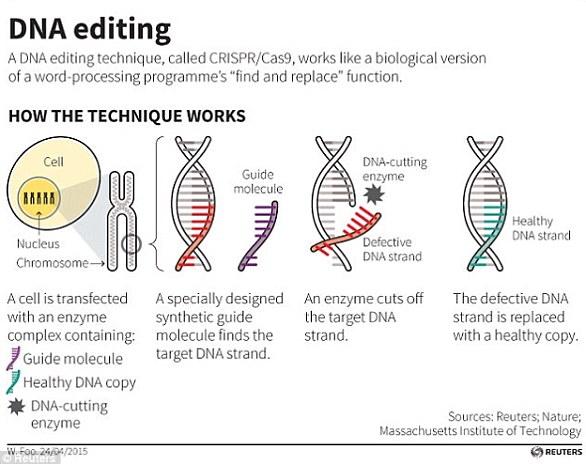 عملية التعديل الجينى