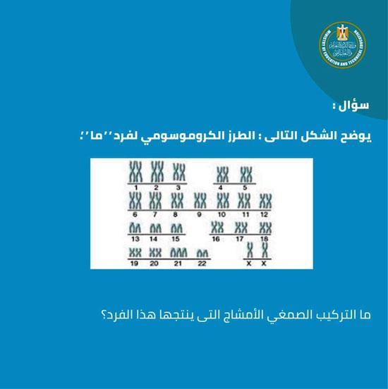 5201911214952841-FB_IMG_1557603542871