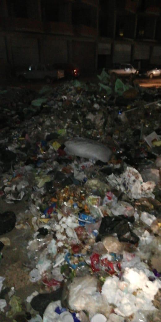 القمامة بشارع التروللى فى المطرية  (1)