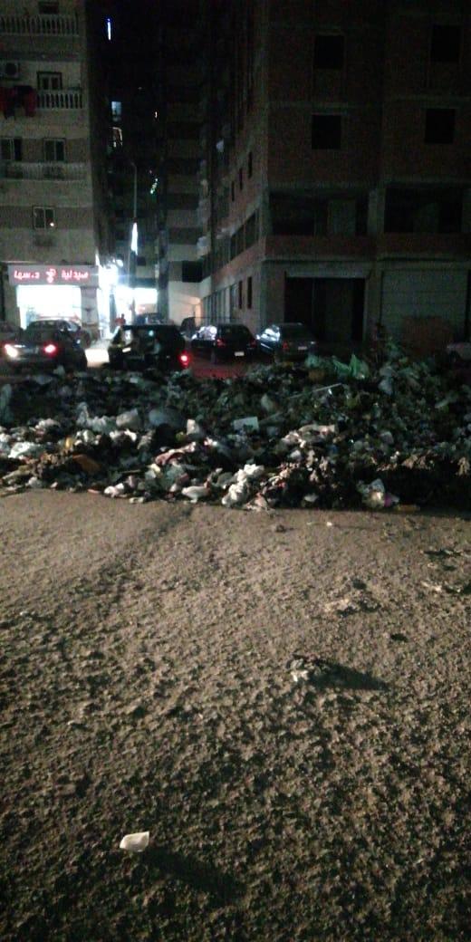 القمامة بشارع التروللى فى المطرية  (2)