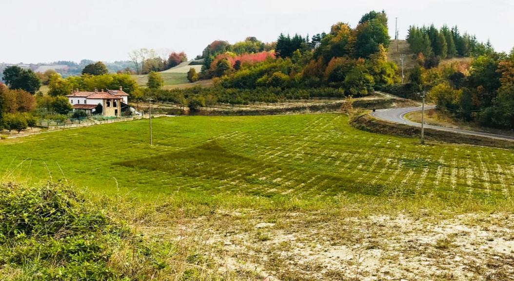 قرية بارلدو
