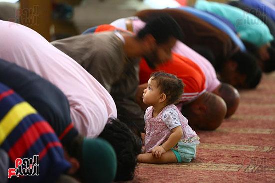 صلاة التراويح من مسجد عمرو بن العاص (8)
