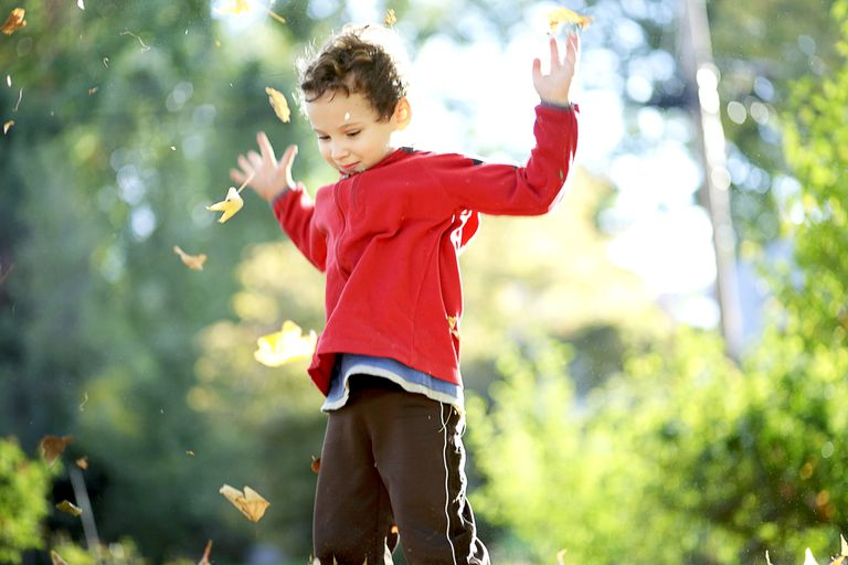 child-tossing-autumn-leaves-into-the-air-492814440-bb8d30fa4fc345bba2cd1d0831316289
