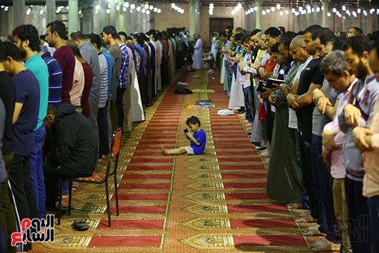 صلاة التراويح من مسجد عمرو بن العاص (17)