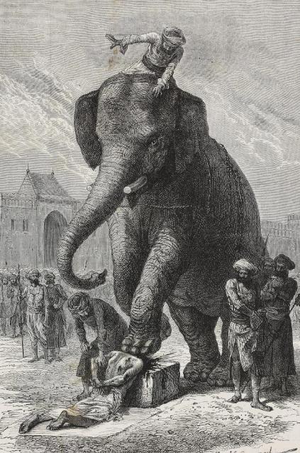 الموت أسفل رجل الفيل