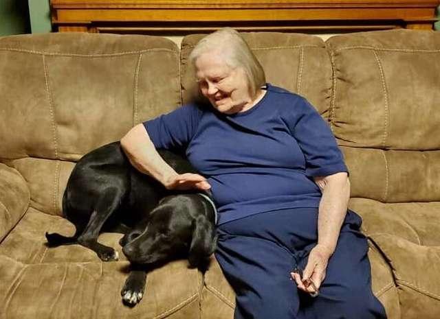 الجدة وميسون