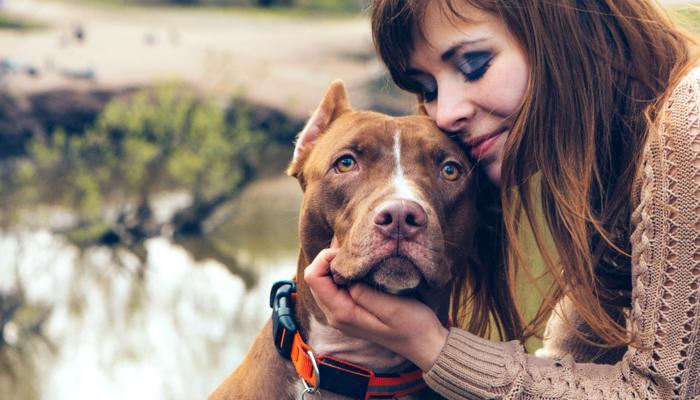 صفات يتركها الكلاب والقطط في أصحابهم (1)
