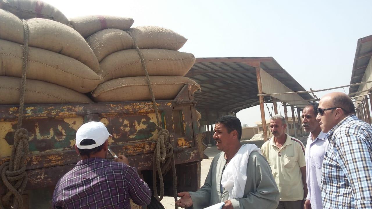 بدء استلام تقاوى القمح والشعير والفول استعدادا للموسم الجديد (2)