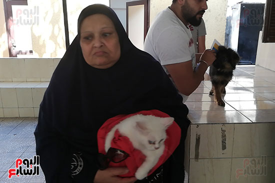 مراكز رعاية الحيوانات الأليفة (4)