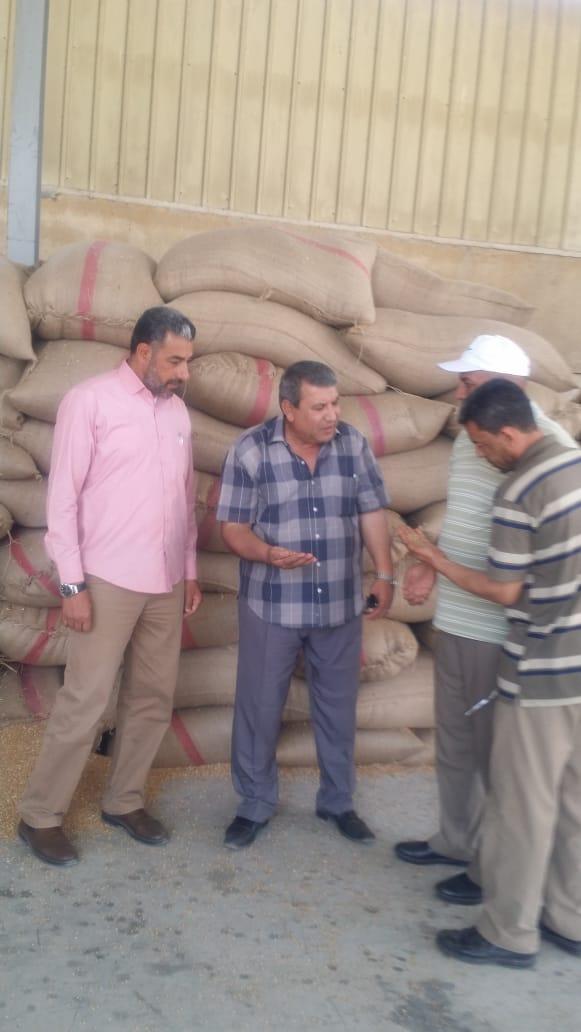 بدء استلام تقاوى القمح والشعير والفول استعدادا للموسم الجديد (4)