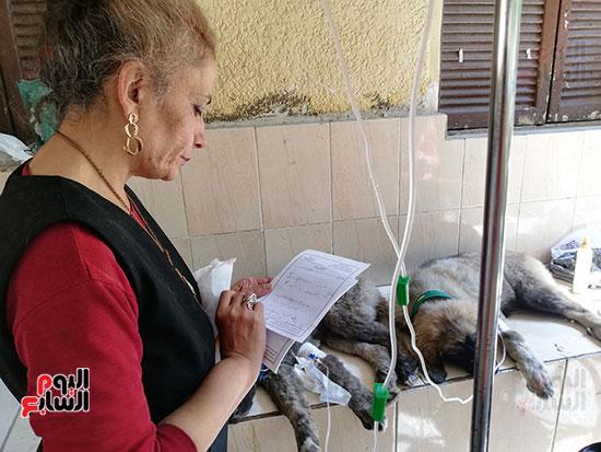 مراكز رعاية الحيوانات الأليفة (6)