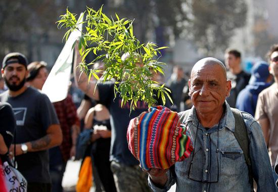 مسيرة الحشاشين فى تشيلى (10)