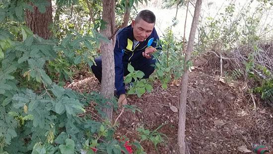 موقع العثور على الرضيع مدفونا فى تايلاند
