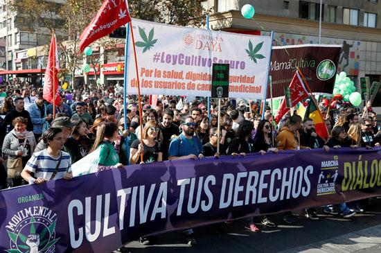 مسيرة الحشاشين فى تشيلى (2)
