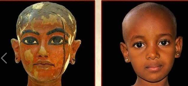 التشابه فى ملامح المصريين عبر التاريخ