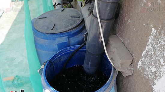 زراعة الأسطح بالقاهرة حل سحرى لمشاكل التلوث  (2)