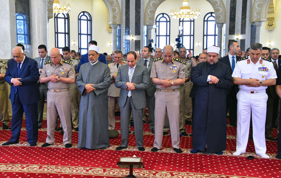 الرئيس عبد الفتاح السيسى (6)
