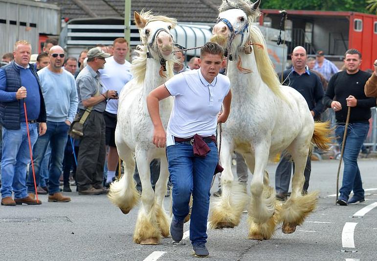 أحد ملاك الخيول