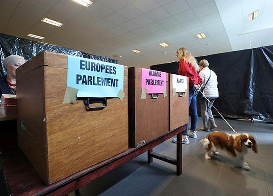 سيدة تصطحب كلبها فى انتخابات البرلمان الأوروبى
