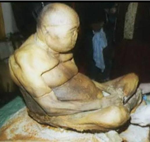 الجثة فى المتحف