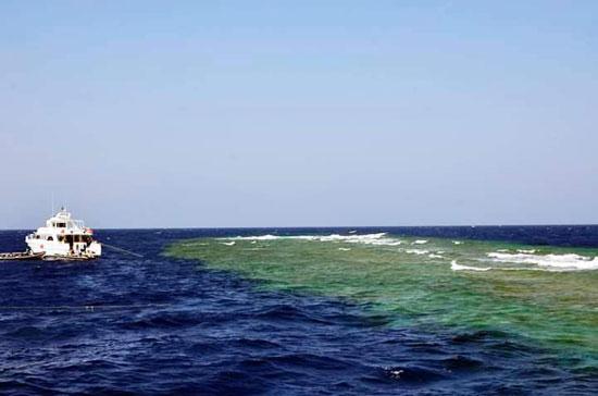 البحر الأحمر (8)