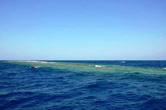 البحر الأحمر (7)