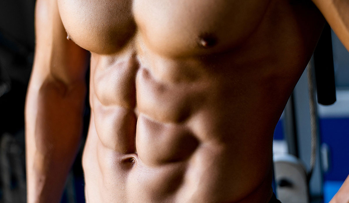 عضلات.