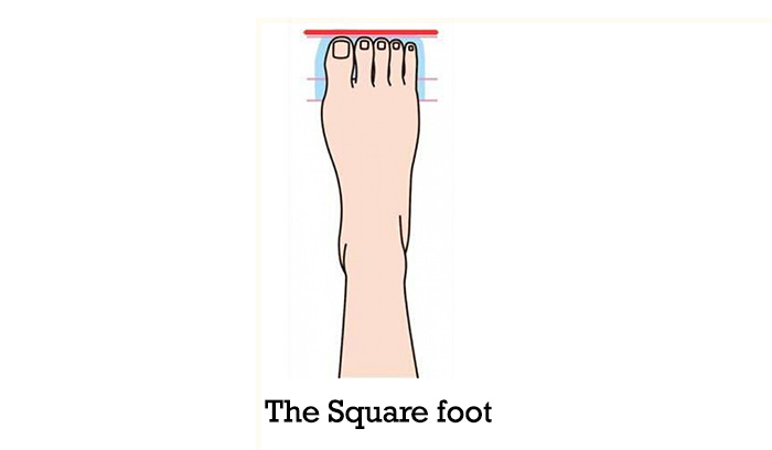 The-Square-Foot-1