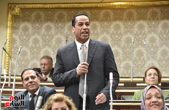 مجلس-النواب-الجلسة-العامة-(12)