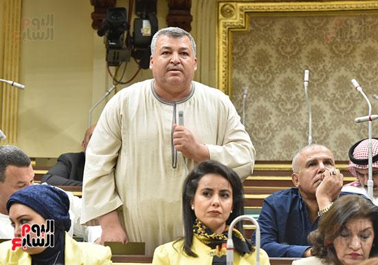 مجلس-النواب-الجلسة-العامة-(16)