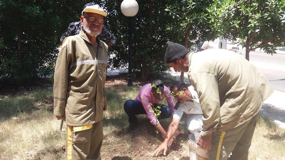 الأقصر تواصل مشاركتها في مبادرة الرئيس لزراعة مليون شجرة مثمرة  (2)