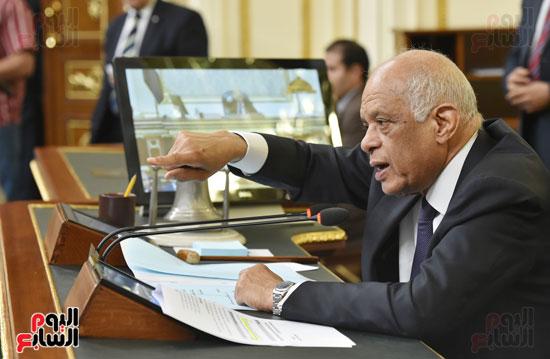 الجلسه العامه لمجلس النواب (12)