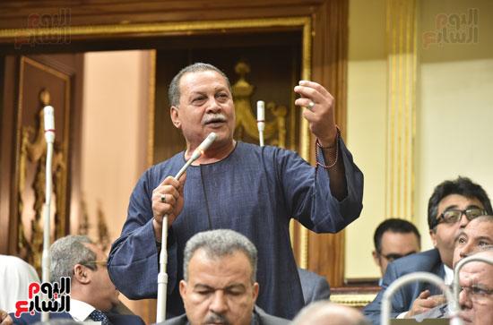 الجلسه العامه لمجلس النواب (4)