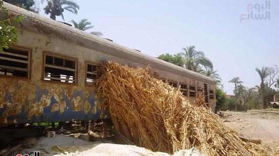 قطار مهجورة تتحول لعشش فراخ (9)