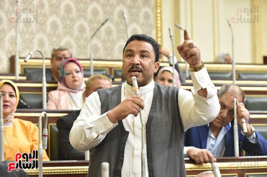 الجلسه العامه لمجلس النواب (3)