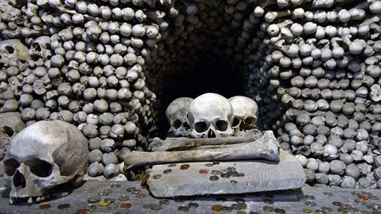 جماجم وعظام بشرية